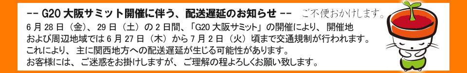 G20大阪サミット遅延